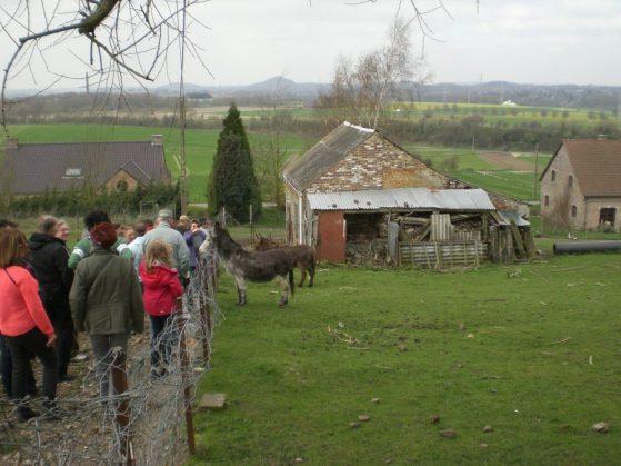 Ruelle Mont-Sainte-Aldegonde