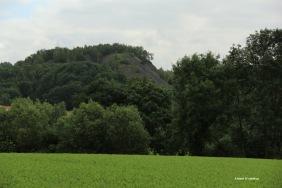 Sentiers-de-la-Haute-Haine_6151