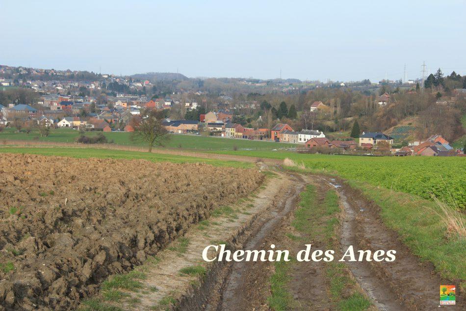 Circuit des 3 villages