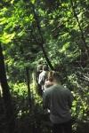 Carnières Bois des Vallées
