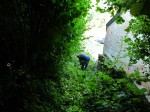 Sentier-des-castelets