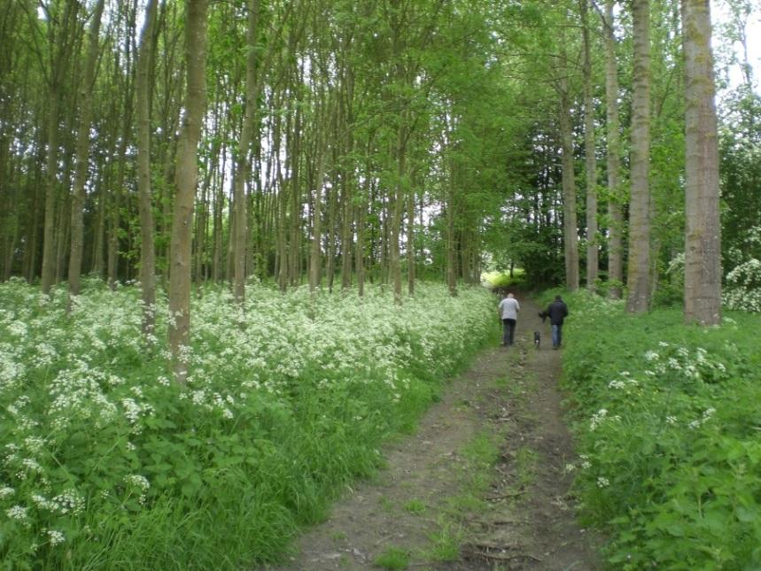 Carnieres-bois-des-vallees2