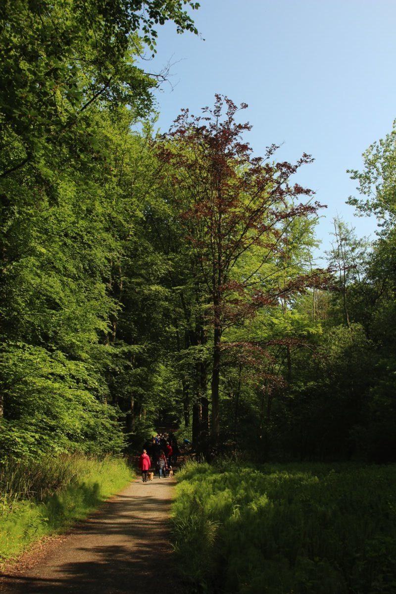 Mariemont-Balade-Sentiers